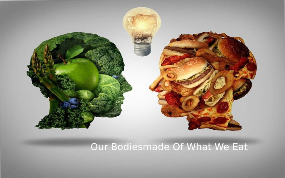 Our Bodies made Of What We Eat