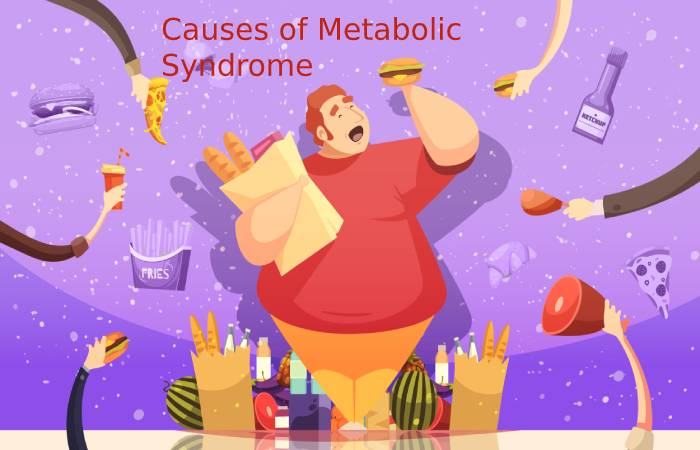 Causes of Metabolic Syndrome