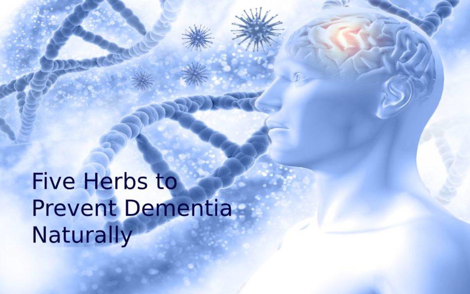 Five Herbs to Prevent Dementia