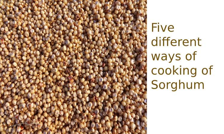 Five different ways of cooking of Sorghum