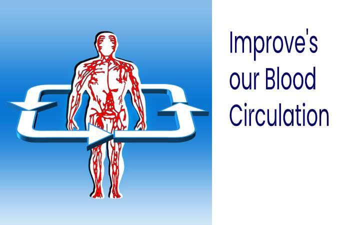 Improve our Blood Circulation