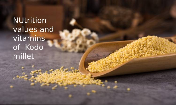 NUtrition values and vitamins of Kodo millet
