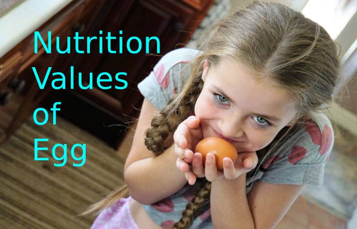 Nutrition Values of Egg