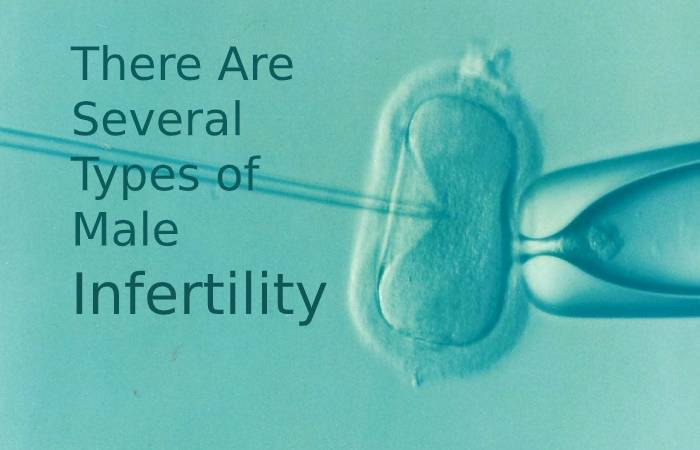 There are several types of male infertility