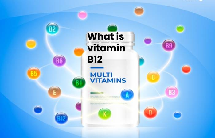 what is vitamin b12