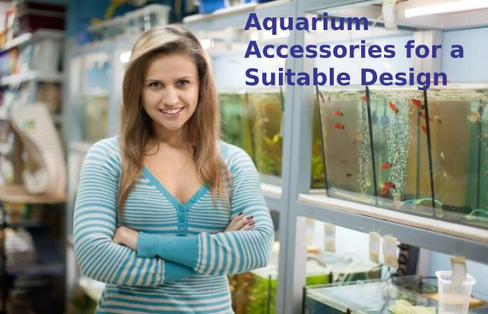 Aquarium accessories for a suitable design