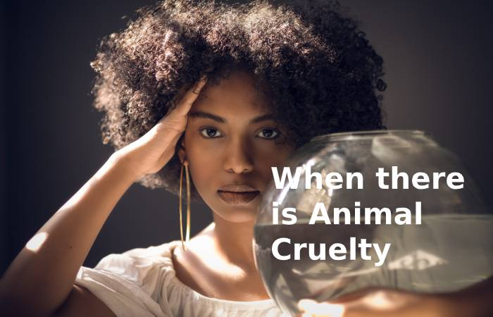 When there is Animal Cruelty