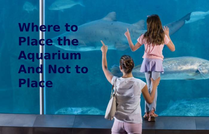 where to place and not to place an aquarium