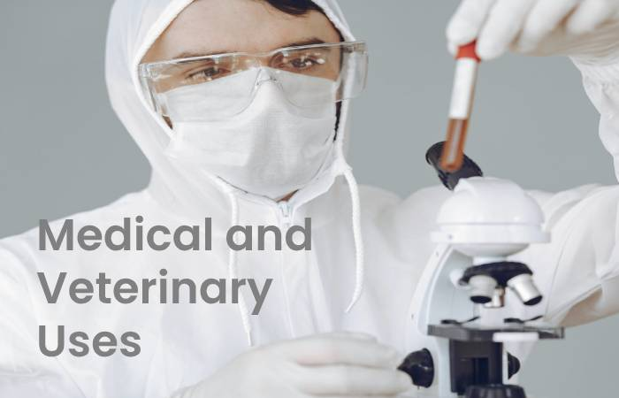 Medical and Veterinary Uses