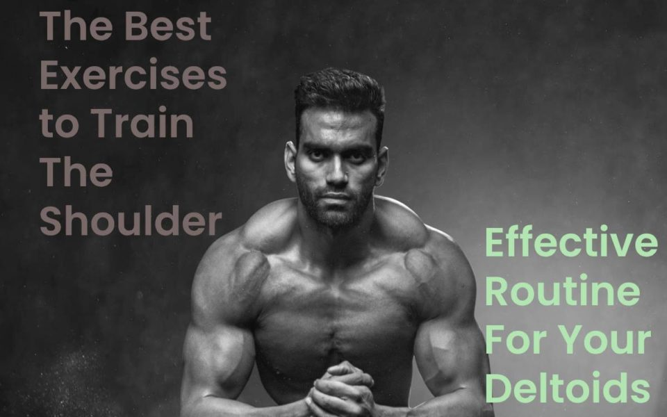 The best exercises For shoulder and Effective routine for your deltoids