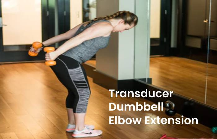 Transducer Dumbbell Elbow Extension