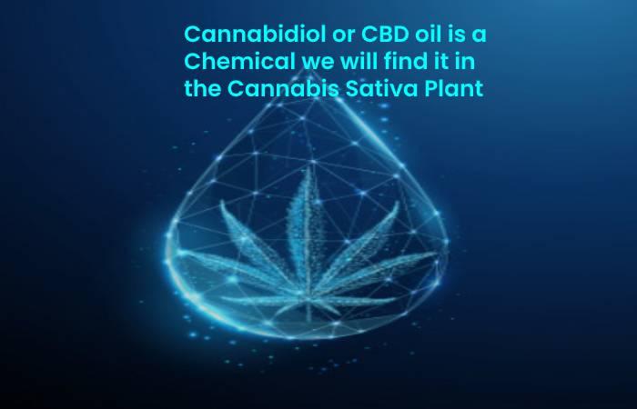 Cannabidiol or CBD oil