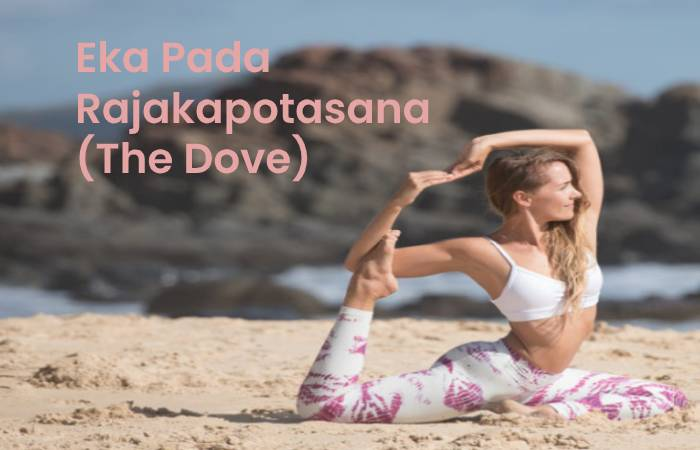 Eka Pada Rajakapotasana (The Dove)