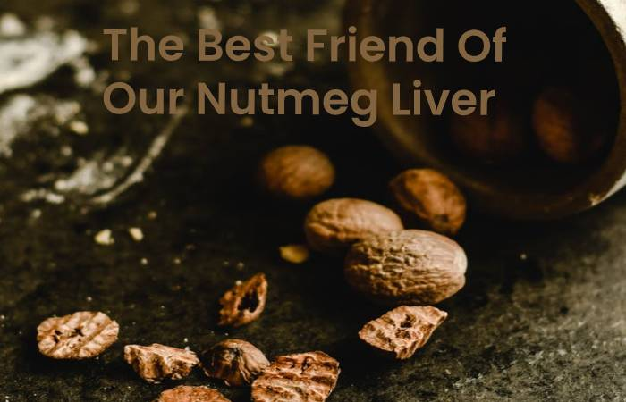 The Best Friend Of Our Nutmeg Liver