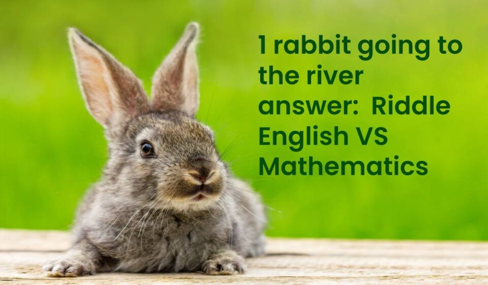 1 rabbit going to the river answer
