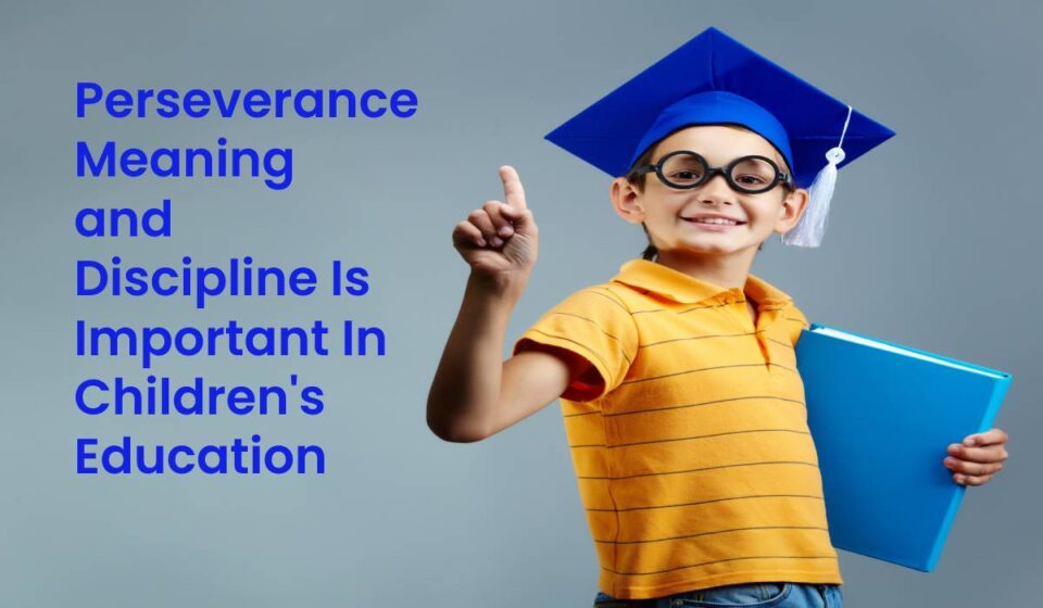 Perseverance Meaning and Discipline